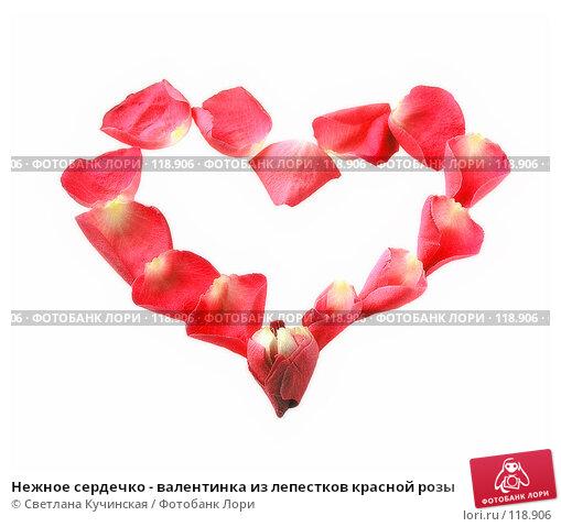 Нежное сердечко - валентинка из лепестков красной розы, фото № 118906, снято 11 декабря 2016 г. (c) Светлана Кучинская / Фотобанк Лори