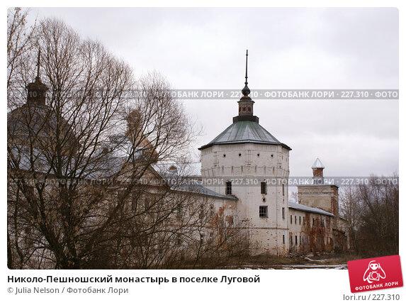 Николо-Пешношский монастырь в поселке Луговой, фото № 227310, снято 15 марта 2008 г. (c) Julia Nelson / Фотобанк Лори