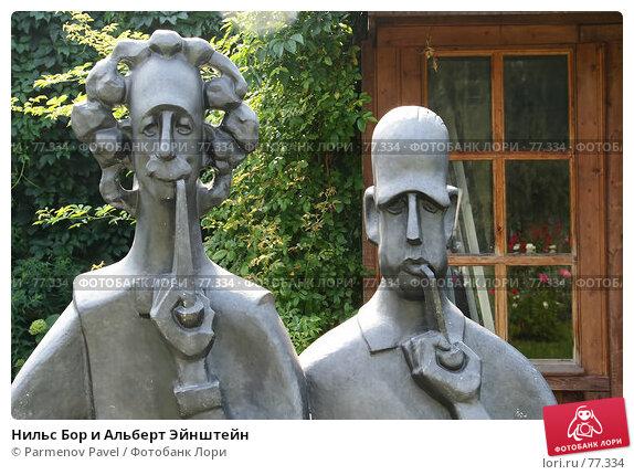 Нильс Бор и Альберт Эйнштейн, фото № 77334, снято 23 августа 2007 г. (c) Parmenov Pavel / Фотобанк Лори
