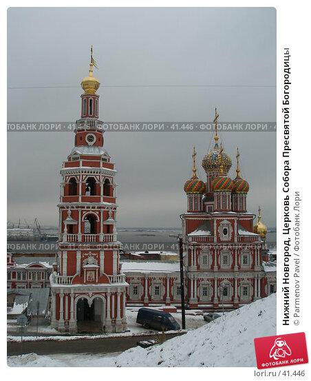 Нижний Новгород, Церковь Собора Пресвятой Богородицы, фото № 41446, снято 23 ноября 2006 г. (c) Parmenov Pavel / Фотобанк Лори