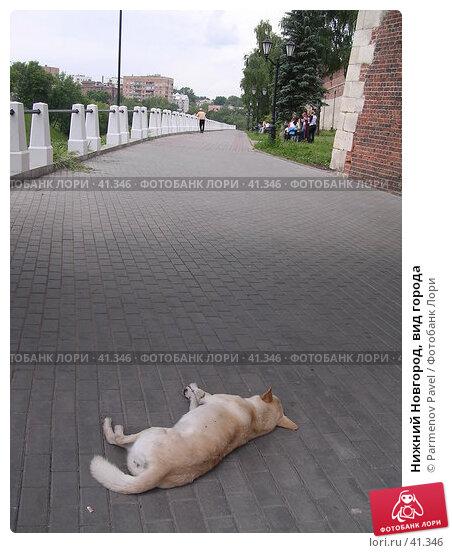 Нижний Новгород, вид города, фото № 41346, снято 15 июня 2005 г. (c) Parmenov Pavel / Фотобанк Лори