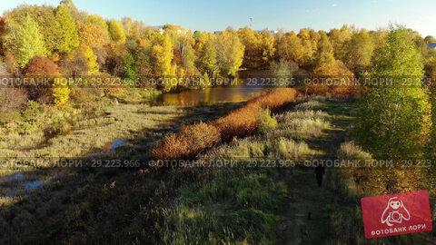 Купить «Nizhny Kamensky pond in autumn in Moscow. Russia», видеоролик № 29223966, снято 15 октября 2018 г. (c) Володина Ольга / Фотобанк Лори