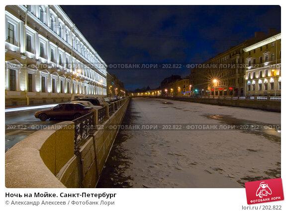 Купить «Ночь на Мойке. Санкт-Петербург», эксклюзивное фото № 202822, снято 16 ноября 2007 г. (c) Александр Алексеев / Фотобанк Лори