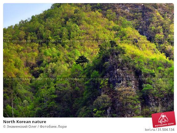 Купить «North Korean nature», фото № 31504134, снято 4 мая 2019 г. (c) Знаменский Олег / Фотобанк Лори