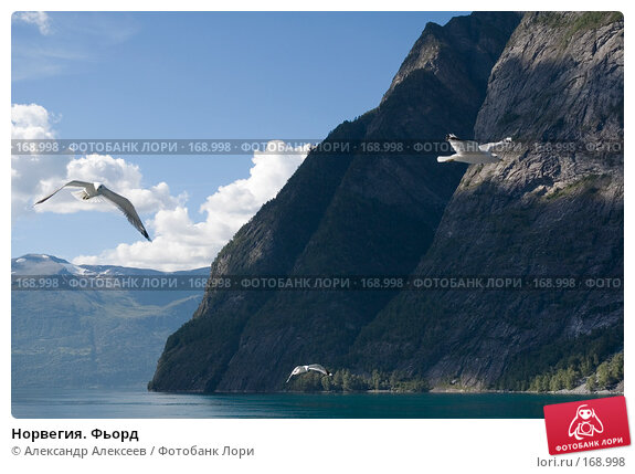 Норвегия. Фьорд, эксклюзивное фото № 168998, снято 2 августа 2006 г. (c) Александр Алексеев / Фотобанк Лори