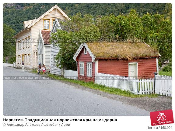 Норвегия. Традиционная норвежская крыша из дерна, эксклюзивное фото № 168994, снято 30 июля 2006 г. (c) Александр Алексеев / Фотобанк Лори