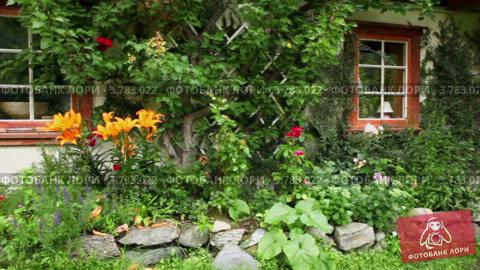 Купить «Норвежский загородный дом среди растений», видеоролик № 3783022, снято 15 мая 2012 г. (c) Losevsky Pavel / Фотобанк Лори