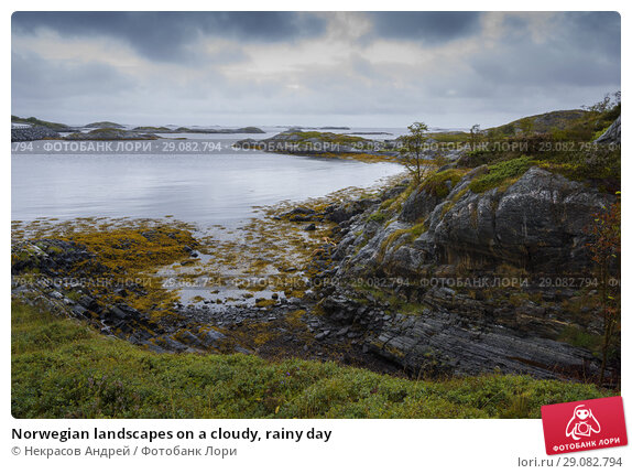 Купить «Norwegian landscapes on a cloudy, rainy day», фото № 29082794, снято 10 августа 2018 г. (c) Некрасов Андрей / Фотобанк Лори