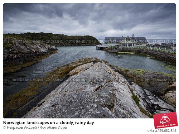 Купить «Norwegian landscapes on a cloudy, rainy day», фото № 29082842, снято 4 августа 2018 г. (c) Некрасов Андрей / Фотобанк Лори