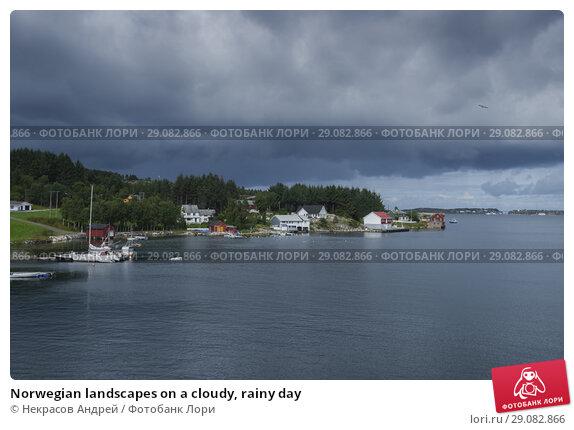 Купить «Norwegian landscapes on a cloudy, rainy day», фото № 29082866, снято 11 августа 2018 г. (c) Некрасов Андрей / Фотобанк Лори