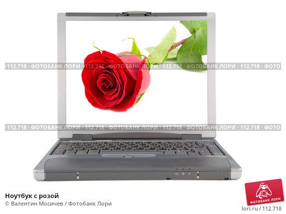 Ноутбук с розой, фото № 112718, снято 16 февраля 2007 г. (c) Валентин Мосичев / Фотобанк Лори
