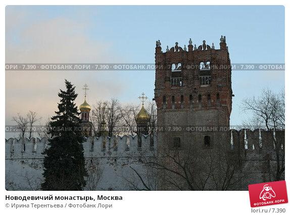 Новодевичий монастырь, Москва, эксклюзивное фото № 7390, снято 14 января 2006 г. (c) Ирина Терентьева / Фотобанк Лори