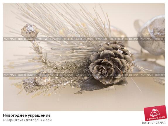 Купить «Новогоднее украшение», фото № 175950, снято 13 января 2008 г. (c) Asja Sirova / Фотобанк Лори