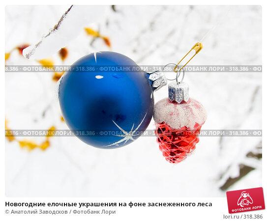 Новогодние елочные украшения на фоне заснеженного леса, фото № 318386, снято 11 ноября 2006 г. (c) Анатолий Заводсков / Фотобанк Лори