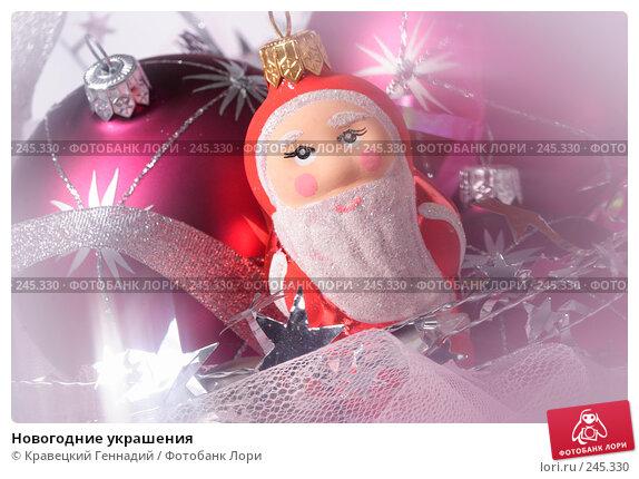 Новогодние украшения, фото № 245330, снято 18 ноября 2004 г. (c) Кравецкий Геннадий / Фотобанк Лори