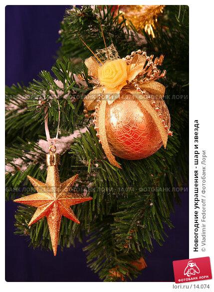 Новогодние украшения - шар и звезда, фото № 14074, снято 3 ноября 2006 г. (c) Vladimir Fedoroff / Фотобанк Лори