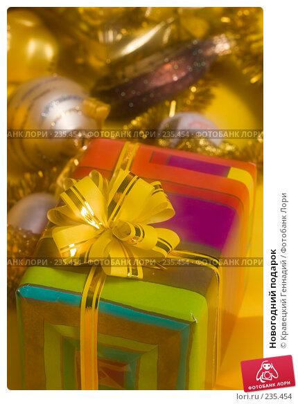 Купить «Новогодний подарок», фото № 235454, снято 27 апреля 2018 г. (c) Кравецкий Геннадий / Фотобанк Лори