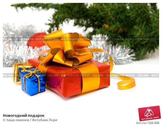 Новогодний подарок, фото № 326066, снято 4 июня 2008 г. (c) паша семенов / Фотобанк Лори