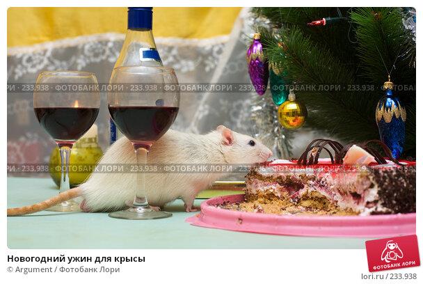 Новогодний ужин для крысы, фото № 233938, снято 31 декабря 2007 г. (c) Argument / Фотобанк Лори