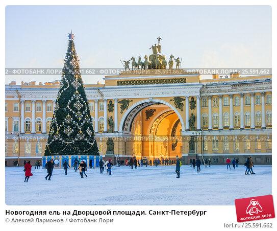 Новогодняя ель на Дворцовой площади. Санкт-Петербург, фото № 25591662, снято 5 января 2017 г. (c) Алексей Ларионов / Фотобанк Лори