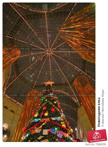 Новогодняя елка, фото № 154618, снято 9 декабря 2007 г. (c) Astroid / Фотобанк Лори