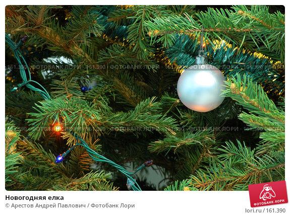 Новогодняя елка, фото № 161390, снято 23 июля 2017 г. (c) Арестов Андрей Павлович / Фотобанк Лори