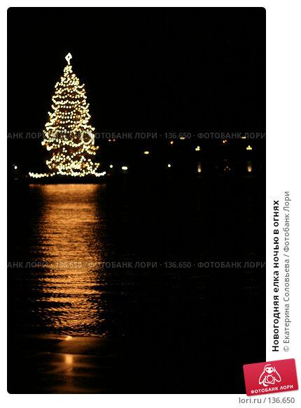 Новогодняя елка ночью в огнях, фото № 136650, снято 2 декабря 2007 г. (c) Екатерина Соловьева / Фотобанк Лори