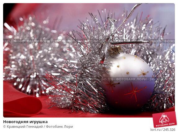 Новогодняя игрушка, фото № 245326, снято 14 ноября 2004 г. (c) Кравецкий Геннадий / Фотобанк Лори