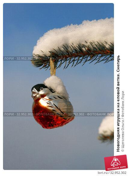 Новогодняя игрушка на еловой ветке. Снегирь. Стоковое фото, фотограф Щеголева Ольга / Фотобанк Лори
