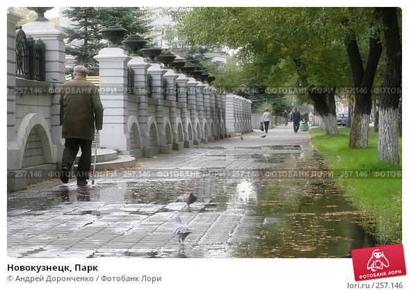 Новокузнецк, Парк, фото № 257146, снято 26 июля 2017 г. (c) Андрей Доронченко / Фотобанк Лори