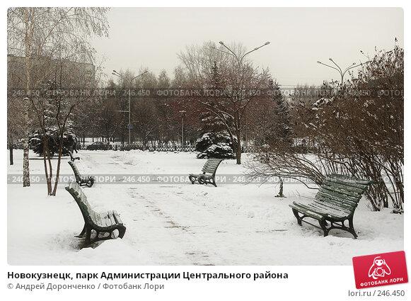 Новокузнецк, парк Администрации Центрального района, фото № 246450, снято 19 января 2017 г. (c) Андрей Доронченко / Фотобанк Лори