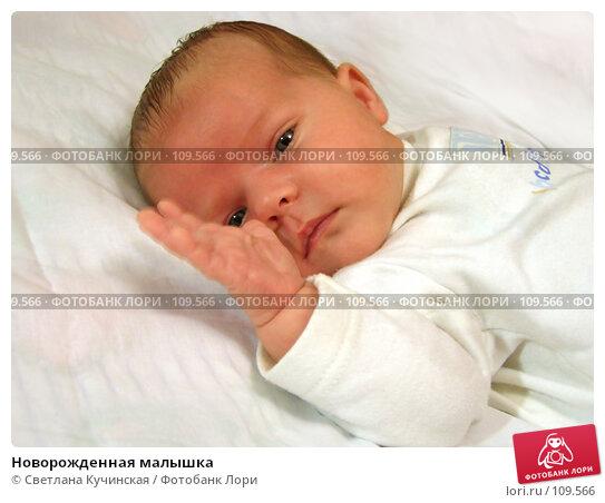 Новорожденная малышка, фото № 109566, снято 22 февраля 2017 г. (c) Светлана Кучинская / Фотобанк Лори