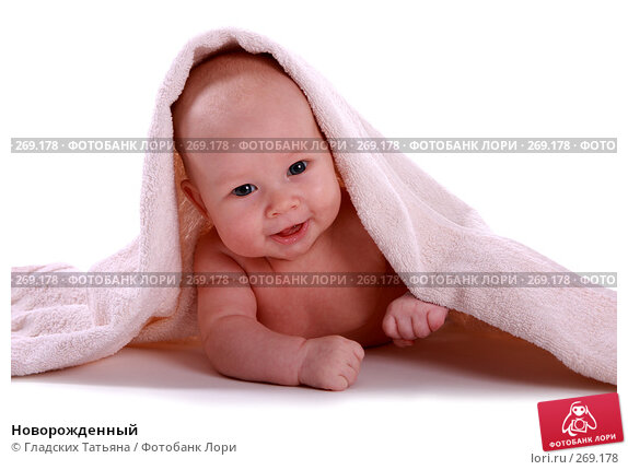 Новорожденный, фото № 269178, снято 24 апреля 2007 г. (c) Гладских Татьяна / Фотобанк Лори