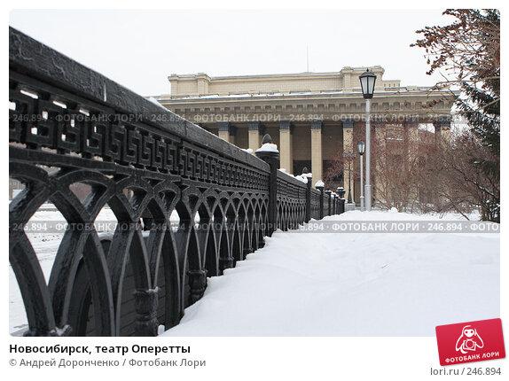 Купить «Новосибирск, театр Оперетты», фото № 246894, снято 18 января 2007 г. (c) Андрей Доронченко / Фотобанк Лори