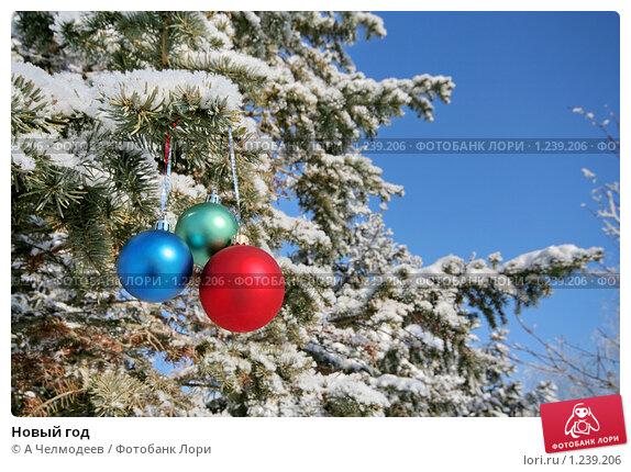 Новый год. Стоковое фото, фотограф A Челмодеев / Фотобанк Лори
