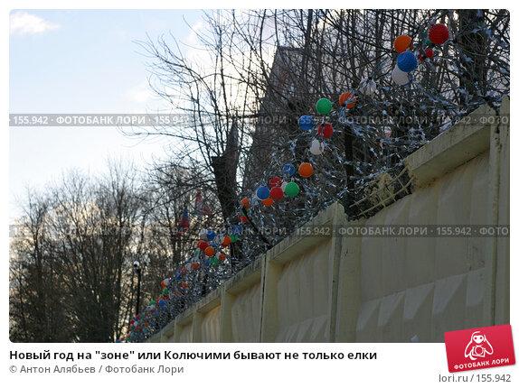 """Новый год на """"зоне"""" или Колючими бывают не только елки, фото № 155942, снято 21 декабря 2007 г. (c) Антон Алябьев / Фотобанк Лори"""