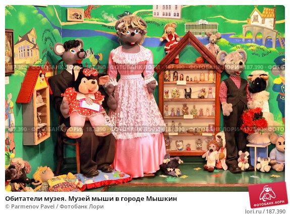 Обитатели музея. Музей мыши в городе Мышкин, фото № 187390, снято 2 января 2008 г. (c) Parmenov Pavel / Фотобанк Лори