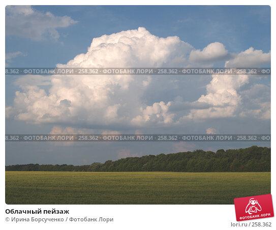 Купить «Облачный пейзаж», фото № 258362, снято 19 июня 2007 г. (c) Ирина Борсученко / Фотобанк Лори
