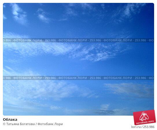 Купить «Облака», фото № 253986, снято 14 апреля 2008 г. (c) Татьяна Богатова / Фотобанк Лори