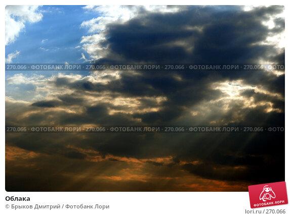 Облака, фото № 270066, снято 2 мая 2008 г. (c) Брыков Дмитрий / Фотобанк Лори