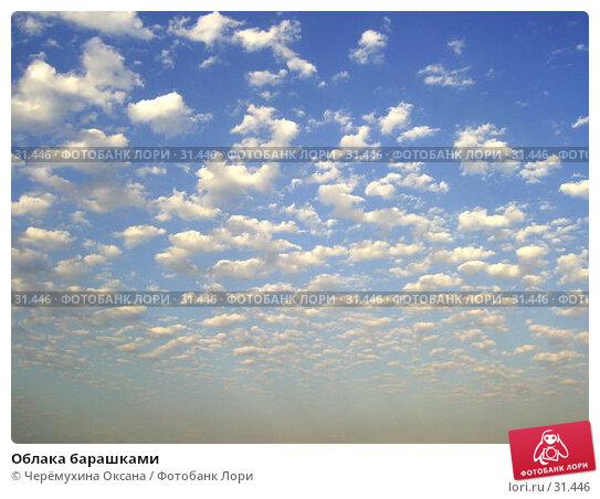 Облака барашками, фото № 31446, снято 20 января 2005 г. (c) Черёмухина Оксана / Фотобанк Лори