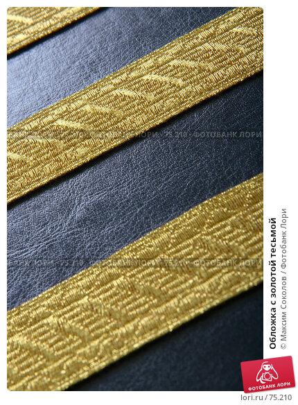 Обложка с золотой тесьмой, фото № 75210, снято 9 мая 2007 г. (c) Максим Соколов / Фотобанк Лори