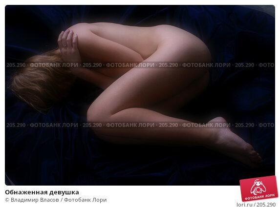 Обнаженная девушка, фото № 205290, снято 19 ноября 2007 г. (c) Владимир Власов / Фотобанк Лори