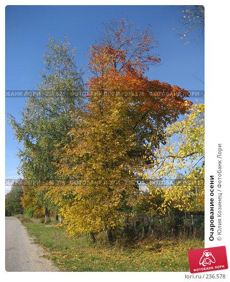 Очарование осени, фото № 236578, снято 23 сентября 2007 г. (c) Юлия Козинец / Фотобанк Лори