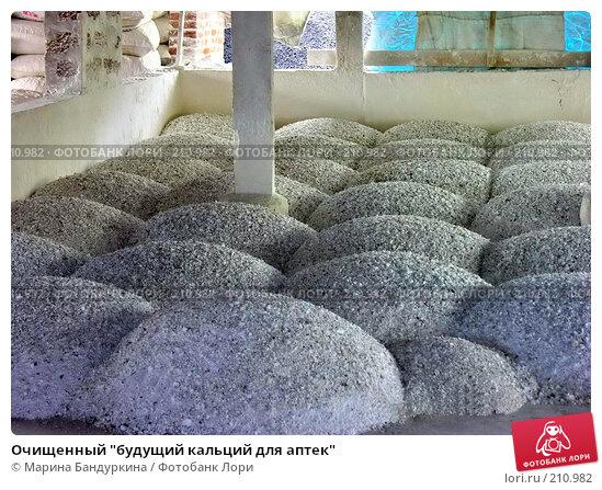 """Очищенный """"будущий кальций для аптек"""", фото № 210982, снято 20 ноября 2005 г. (c) Марина Бандуркина / Фотобанк Лори"""