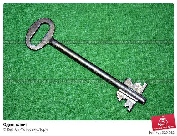 Купить «Один ключ», фото № 320962, снято 12 июня 2008 г. (c) RedTC / Фотобанк Лори