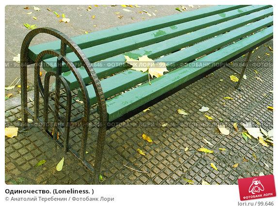 Купить «Одиночество. (Loneliness. )», фото № 99646, снято 11 октября 2007 г. (c) Анатолий Теребенин / Фотобанк Лори