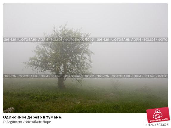 Одиночное дерево в тумане, фото № 303626, снято 29 апреля 2008 г. (c) Argument / Фотобанк Лори