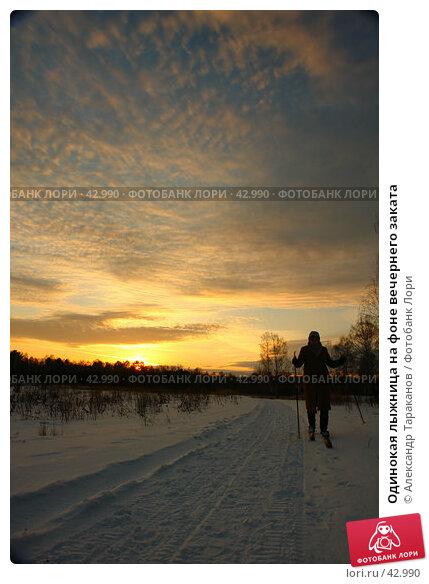 Одинокая лыжница на фоне вечернего заката, эксклюзивное фото № 42990, снято 24 января 2017 г. (c) Александр Тараканов / Фотобанк Лори