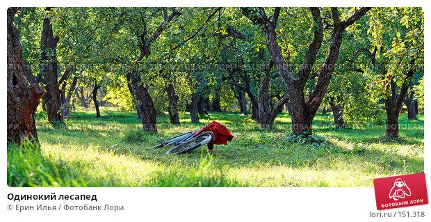Одинокий лесапед, фото № 151318, снято 30 сентября 2007 г. (c) Ерин Илья / Фотобанк Лори